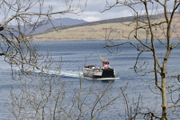 kilchoan ferry