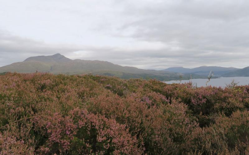 Autumn in Ardnamurchan at Mingarry Lodges