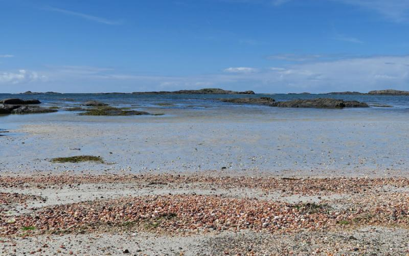 Summer in Ardnamurchan at Mingarry Lodges