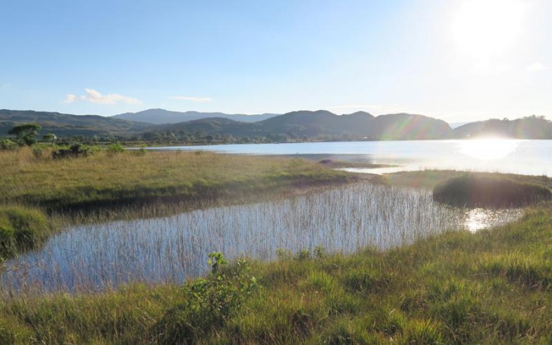 Summer in Ardnamurchan at Mingarry Lodges