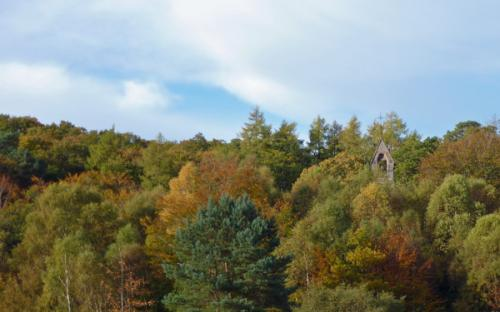Our Lady of The Angels in the autumn woods