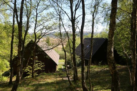 Mingarry Lodges - managing woodland for wildlife