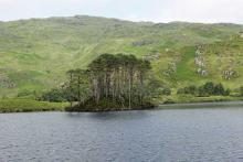 Eilean na Moine, the final resting place of Dumbledore