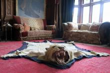 One of the many hunting trophies in Kinloch Castle